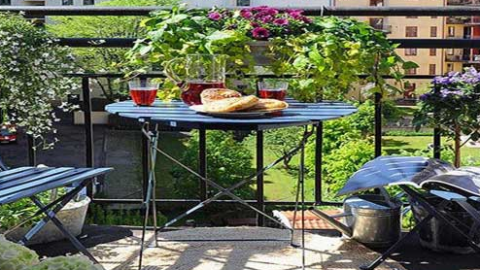 Quelles plantes choisir pour son balcon